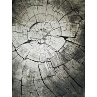 Килим Ibisa - II, 160 x 230 см